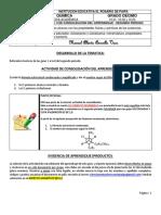 2P_GUIA_9_QUIMICA_10