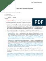 ETAPAS DE AUDITORIA TRIBUTARIA 111