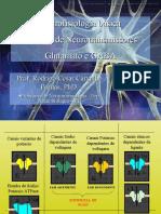 5 - Neurofisiologia - Sistema de Neurotransmissores - Glutamato e GABA (1)