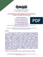 Dialnet-CaracteristicasAntropometricasEnJugadoresDeVoleibo-7063111.pdf