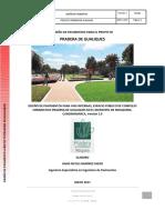 PRO-024-17 Informe Pavimentos Proyecto Gualiques V2.pdf