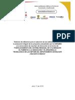 1. TDR Evaluación de Proyectos_MiPymes