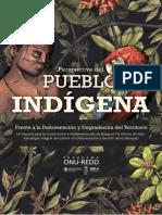 undp_co_medioambiente_redd_indigenas.pdf