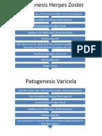 Patogenesis Herpes Zoster + Varicela.pptx