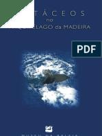 Cetáceos no Arquipélago da Madeira