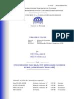 pfe.2019 (1).pdf
