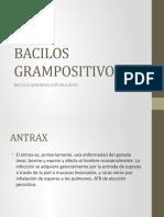 BACILOS GRAMPOSITIVOS