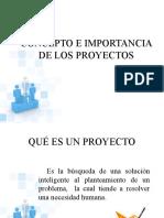 CONCEPTO E IMPORTANCIA DE LOS PROYECTOS