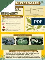 orden Piperales_Posso-Jean.pdf