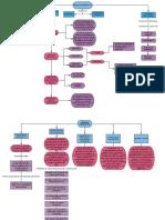 431383571-Mapa-Conceptual-Medicina-Preventiva.pdf