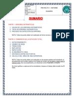 SUMARIO INFORMATIVO INFORME TOPOGRAFIA.pdf
