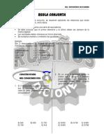 29709713-REGLA-CONJUNTA