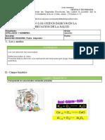 UTILIZANDO LOS OXIDAOS BASICOS EN LA SALUD (2)