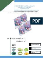 SEMANA 17 - 9º A EBG - MILAGRO - 2020