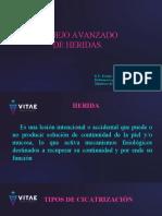 HERIDAS VITAE (1).ppt