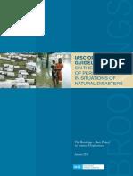 IASC Operational Guidelines.pdf