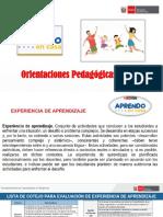Orientaciones Pedagógicas Experiencias de aprendizaje PDF
