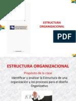 12 Organización ESTRUCTURA