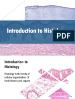 1 Epithelial Tissue.pdf