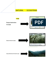 REGIÓN NATURAL    ECOSISTEMA
