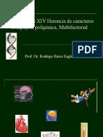 PBIII Clase XIV Herencia de caracteres complejos,[1]