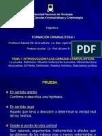 LA PRUEBA - EL PERITO -  FC1-2018-AGRUPADO
