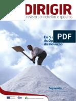 2010.10_DirigirFormar_Inovacao.pdf