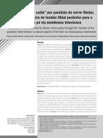 604-Texto do artigo-1203-1-11-20171129.pdf