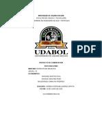 proyecto de cementacion.docx