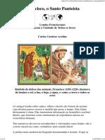 Francisco, o Santo Panteísta