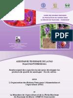 GUIDESAFRAN-MAROC.pdf