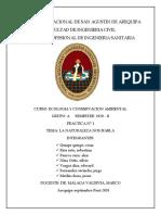 practica N° la naturaleza nos habla.pdf