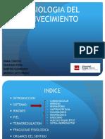 anatomia-presentacion2-161112113853