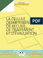 cellule départementale protection.pdf