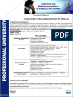 licence-telecom-reseaux.pdf