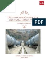Actividad. CÁLCULO DE TUBERÍA FORZADA DE UNA CENTRAL HIDROELÉCTRICA