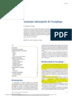 Anatomie chirurgicale de l'œsophage