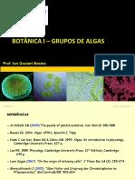 Algas grupos (Botanica I)