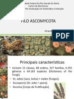 FiloAscomycota