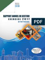 Rapport annuel de gestion 2017