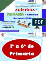 1° A 6° PRIMARIA EST Y DESEMPEÑOS-EF-2020