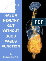 Dr Eva Detko Why You Can t Have a Healthy Gut Without Good Vagus Function