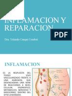 capitulo 3 inflamación aguda y reparación