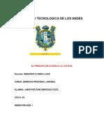 PRINCIPIO DEL ACCESO A LA JUSTICIA.docx
