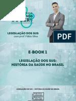 EBOOK RAIZ - LEGISLAÇÃO DO SUS - HISTÓRIA DA SAÚDE (1)