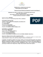 permiso-circulacion (1)