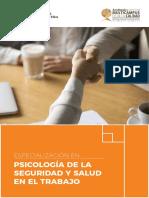 Programa Especialización PSISST FINAL.pdf