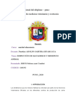 ENSAYO   INSPECCIÓN DE MATADEROS Y BENEFICIO ANIMAL
