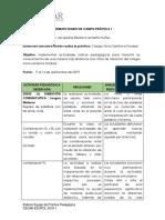 diario de campo y plan de clase practica II