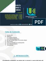 Obras Adicionales Extras y Complementarias-convertido.pdf